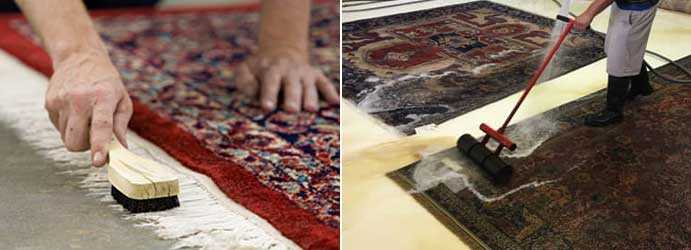Rug Stain Removal Services Service