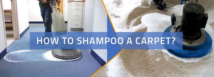 How to Shampoo a Carpet?