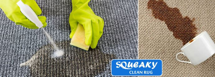 Carpet Stain Removal