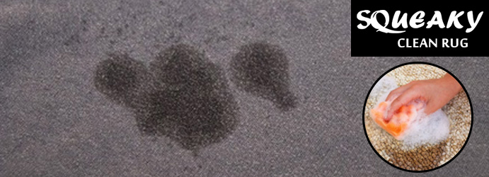 Carpet Oil Stain Removal