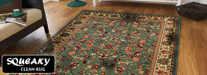 Rug Mould Removal Cudgee