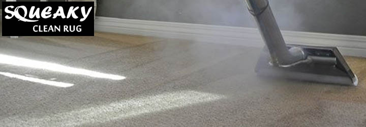 Best Carpet Steam Cleaning Services