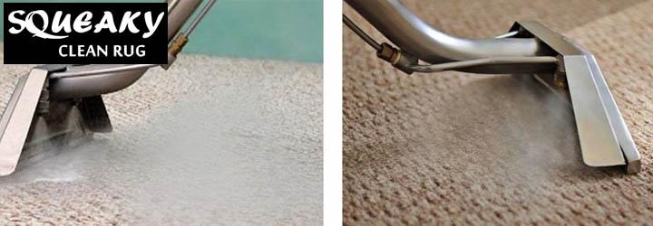 Professional Carpet Steam Cleaner