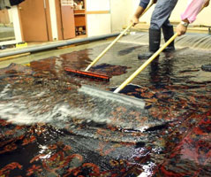 Oriental Rugs Cleaning Baromi