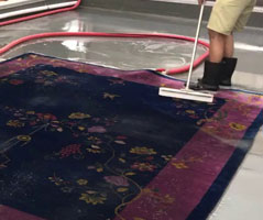 Rug Deodorisation Wattle Bank