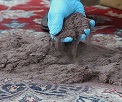 Rug sanitation Nambrok