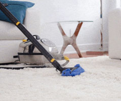 Rug steam cleaning