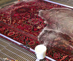 Rug Water Damage Restoration Percydale