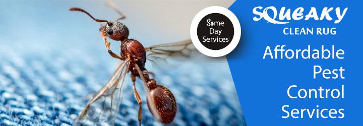 Affordable Pest Control Hobart