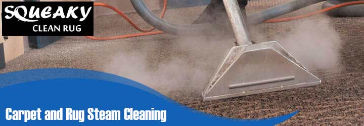 Carpet and Rug Steam Cleaning