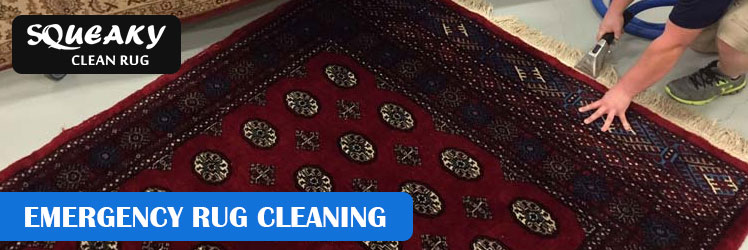 Emergency Rug Cleaning