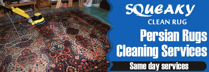 Expert Carpet Cleaning Clifford Gardens