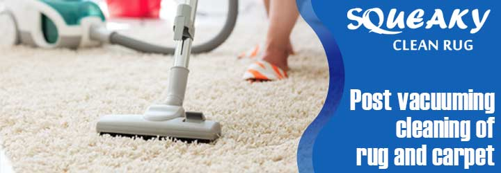 Professional Carpet Cleaning Kangaroo Point