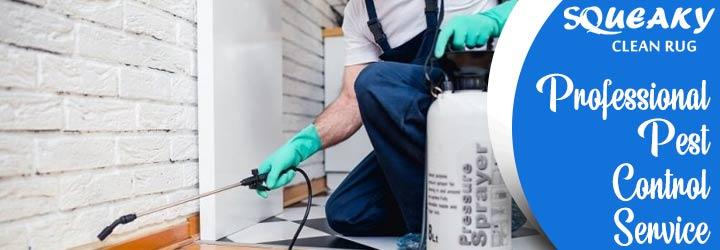 Professional Pest Control Canberra