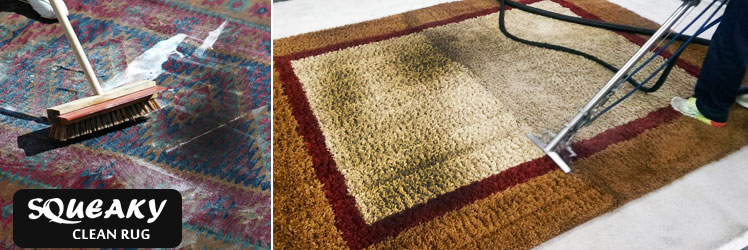 Rug Mould Removal