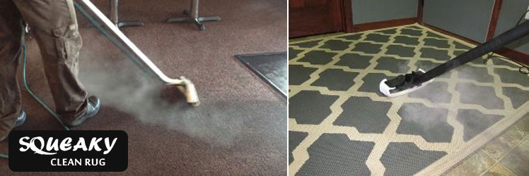 Rug and Carpet Steam Cleaning