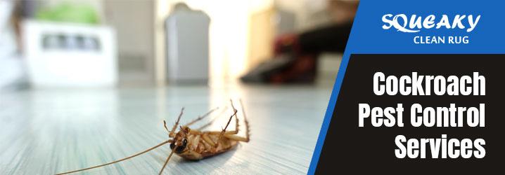 Professional Cockroach Pest Control