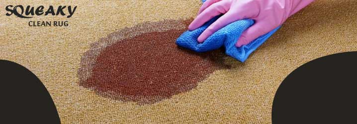 5 Tips to Make Your Carpets Stain and Odor-Free
