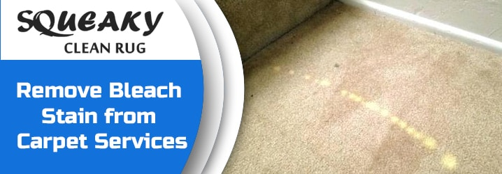 Bleach Stain Removal Service