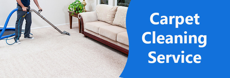 Which Types of Carpets are The Best?