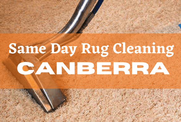 Same Day Rug Cleaning Canberra