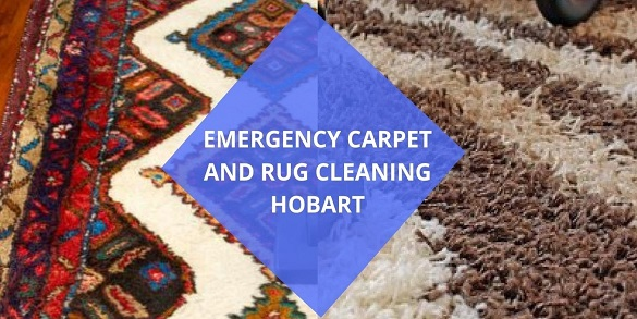 Commercial Rug & Carpet Cleaning Hobart
