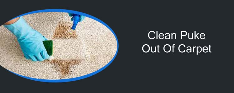 Clean Puke Out of Carpet