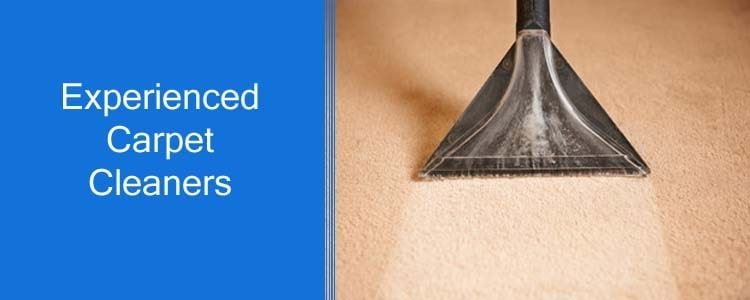 Experienced Carpet Cleaners