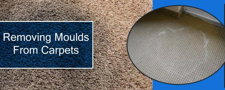 Removing Moulds From Carpets